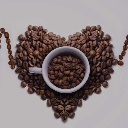 Percorso al caffè Soul Wellness: rigenerante e detossinante